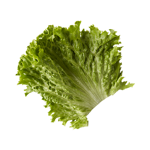 Fancy lettuce - McDonald's
